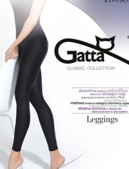 Leggings Microfibra 100 DEN